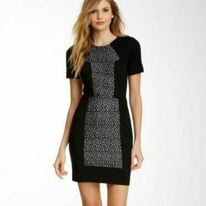 French Connection Dress 4 Black Stretch Fast Olivi
